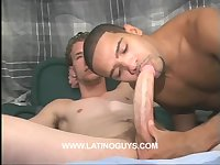 Dominican sucks big white cock